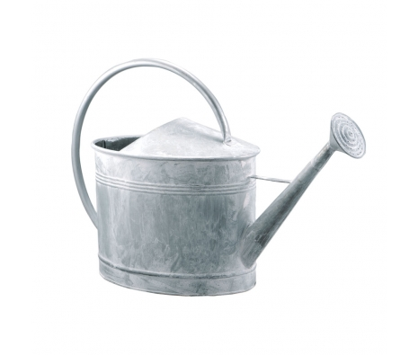 Large Galvanized Zinc Watering Can made by Barreveld.