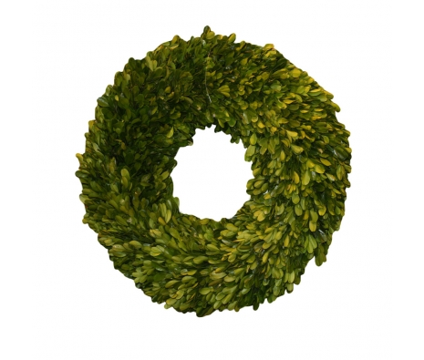 "16"" Kent Preserved Boxwood Wreath made by Mills Floral ."
