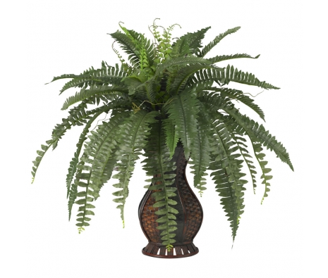 Boston Fern with Vase made by Summertime Florals .