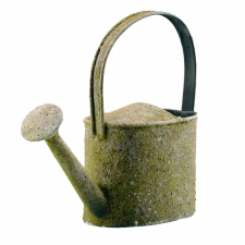 Moss Oval Watering Can