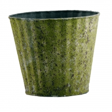 Moss Ribbed Pots, Set of 3