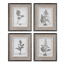 Grey Botanical Study, Set of 4
