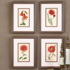 Floral Botanical Study, Set of 4