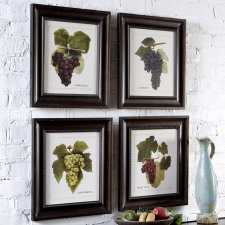 Vino Grapes Botanical, Set of 4