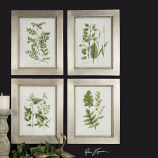 Botanical Collection, Set of 4
