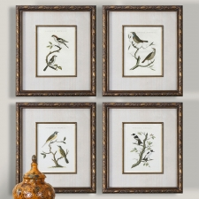 Aviary Botanicals, Set of 4