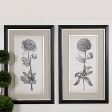 Chrysanthemum Botanical, Set of 2