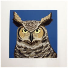 "17"" Night Owl Art Print"