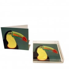 Tropical Toucan Notecards, Set of 10