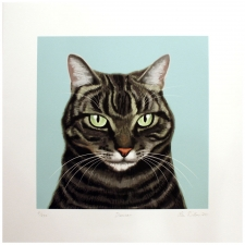 "17"" Grey Tabby Art Print"