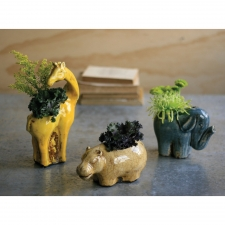 Safari Planters, Set of 3