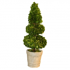 "28"" Everson Preserved Boxwood Topiary Sphere & Cone"