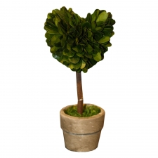 Clarkston Preserved Boxwood Topiary Mini Heart