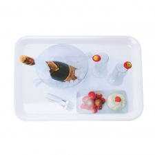 Champagne Melamine Serving Tray