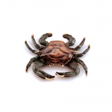 Westerly Crab Doorknocker