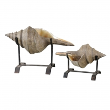Conch Shell Sculptures, Set of 2