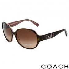 Coach Round Oversize Sunglasses, Brown